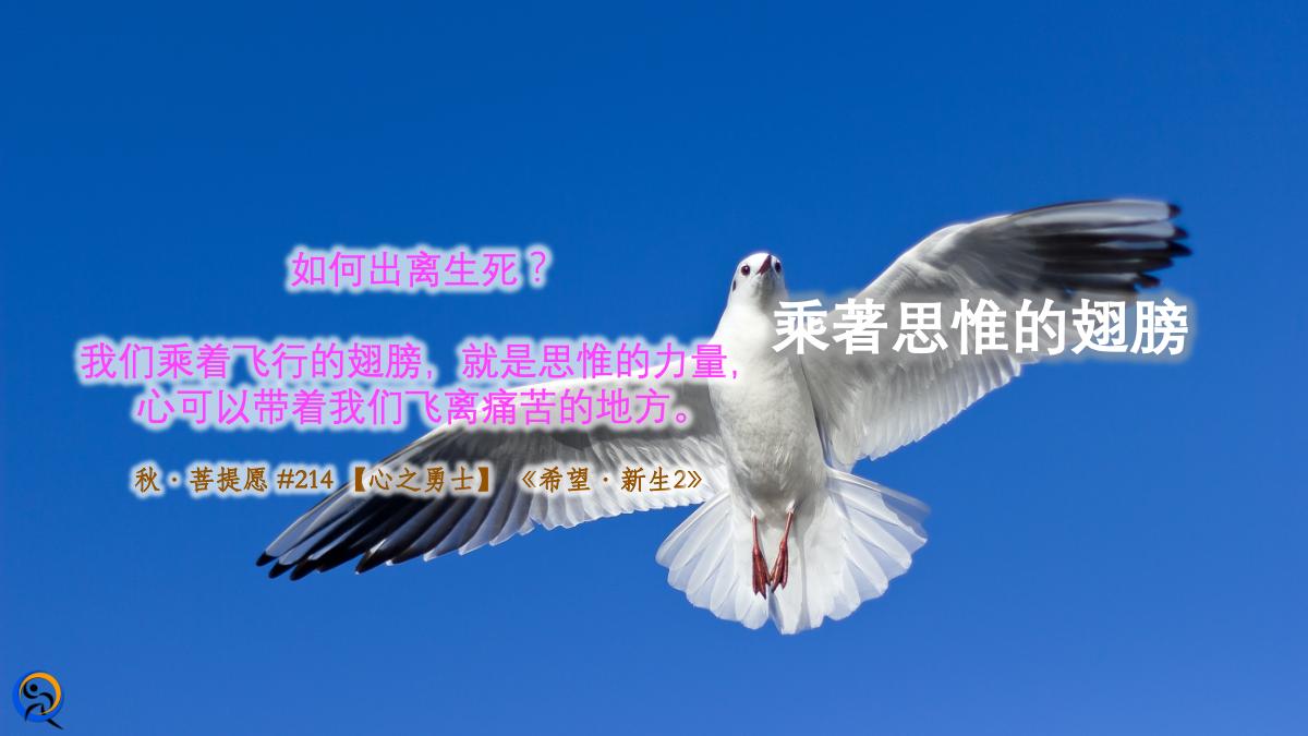 【心之勇士】乘著思惟的翅膀